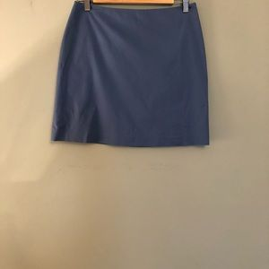 Banana Republic Stretch Skirt